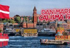 Danimarka Çalışma İzni Nasıl Alınır?
